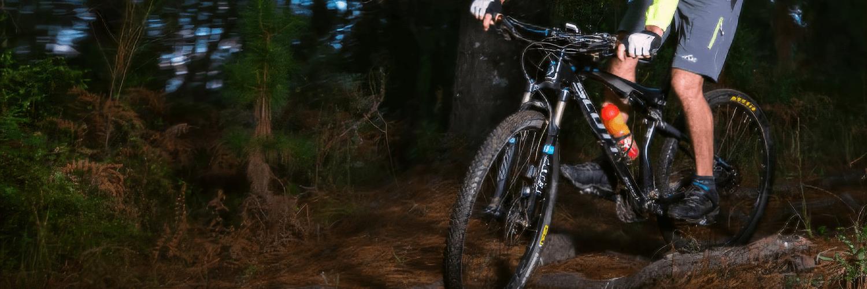 mountain biking George Trails