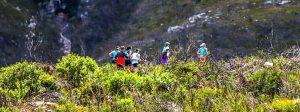 Cradock pass hiking trail, Outeniqua mountains